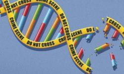 Sapere scientifico e processo penale: itinerari e prospettive